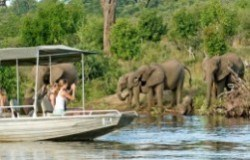 botswana_chobe_chilwero